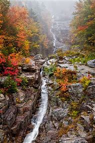 Vertical Fall Landscape Photography