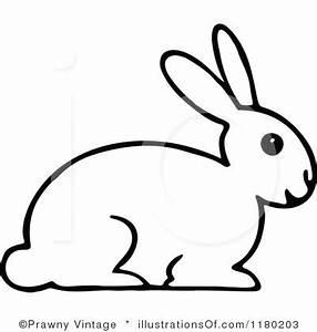 White Rabbit Clipart - Clipart Suggest