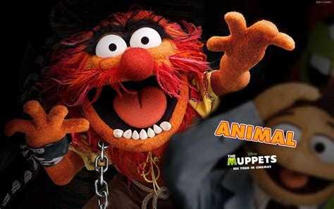 Animal Muppets Wallpaper - muppets wallpapers wallpaper cave