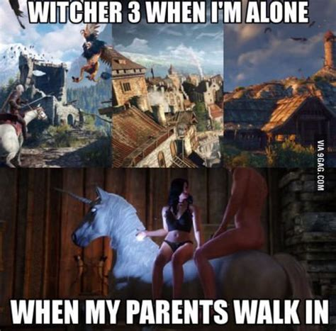 Witcher 3 Memes - 17 best images about the witcher 3 on pinterest elder scrolls games roaches and walk in