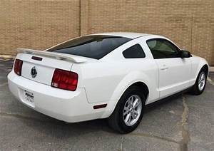 2005 Ford Mustang V6 Deluxe 2dr Fastback Stock # 4518 for sale near Alsip, IL   IL Ford Dealer