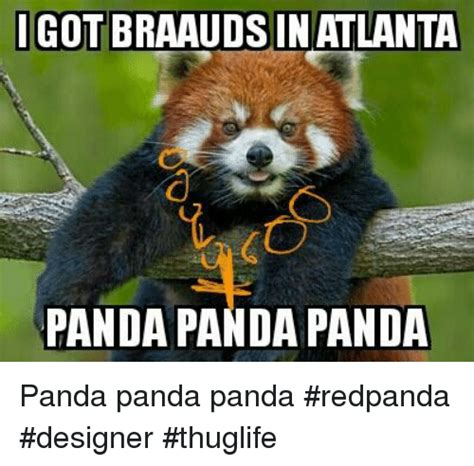 Sex Panda Meme - sex panda meme 28 images funny panda pics funny pictures awesome pictures hilarious pickup