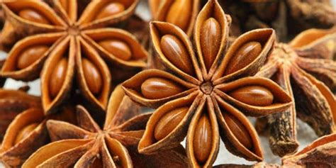 manfaat bunga lawang kesehatan kecantikan