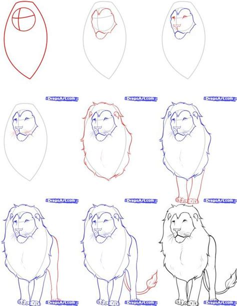 ideas  draw animals  pinterest tutorial