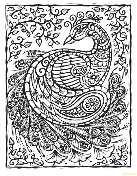 Peacock Patterns Coloring Page Free Coloring Pages Online