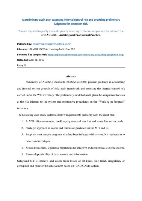 prepare  preliminary audit plan based   case study