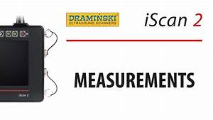Drami U0144ski Iscan 2  Bovine Ultrasound  Measurements