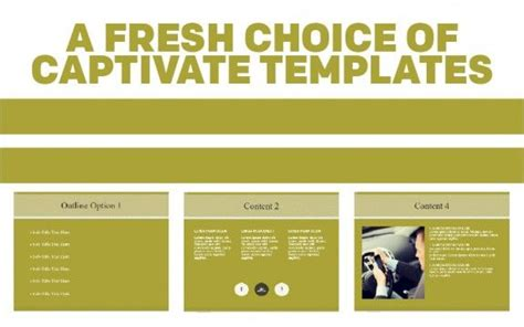 Adobe Captivate Free Templates by 1000 Images About Adobe Captivate Templates On
