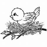 Coloring Bird Canary Nest Wild Birds Tocolor Preschool Printable Colors sketch template