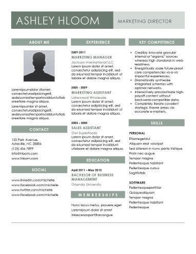 Contemporary Resume by 22 Contemporary Resume Templates Free