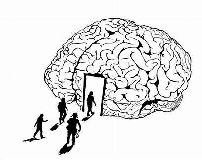Brain Coloring Neuroscience Human Shirt Sheet Pdf