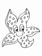 Starfish Coloring Fish Chameleon Ram Recommended sketch template