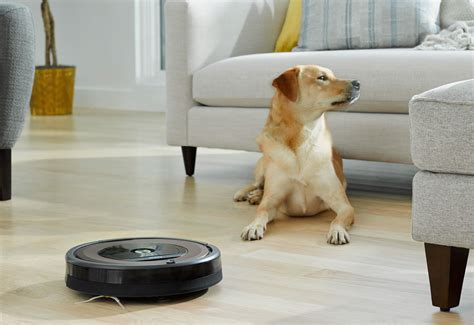 In Hair by What S The Best Roomba For Pet Hair In 2018 Best Reviews