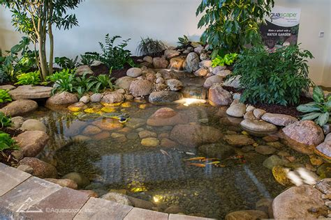 Aquascape Store by Water Gardening Store And Inspiration Center Pond