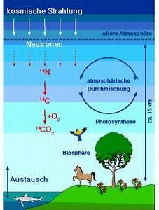 Radiokarbonmethode Rechnung : physik referat ber die c 14 methode ~ Themetempest.com Abrechnung