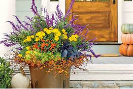 Fall Gardening What To Do Now – CaryCitizen