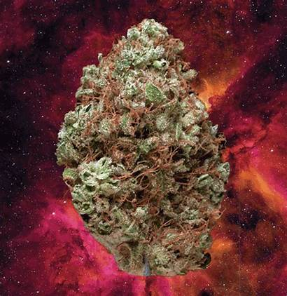 Weed Songs Marijuana Smoke Cannabis Smoking Ganja