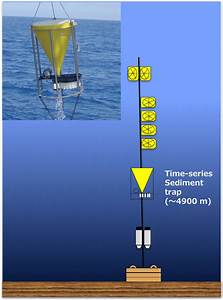 Oceansites Related