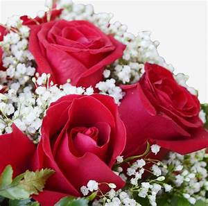 Order your flowers online in Qatar with and send them to ...