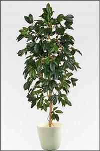 Baum Mit Blüten : wir bieten ihnen eine gro e auswahl an k nstlichen pflanzen in unserem onlineshop zu g nstigen ~ Frokenaadalensverden.com Haus und Dekorationen
