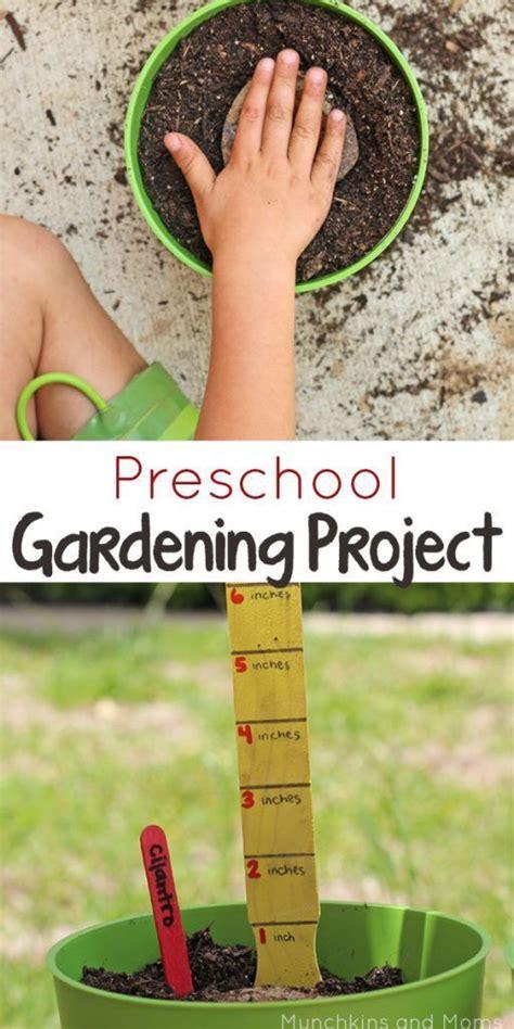 best 25 preschool garden ideas on preschool 952 | b7a4c9ff7db0babe33a38ff0adcc788f preschool science preschool ideas