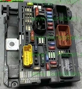 Citroen C4 Electrical System Box Fuse Bsm R05 Delphi 9666700480 S12067446 Zie 9800270480