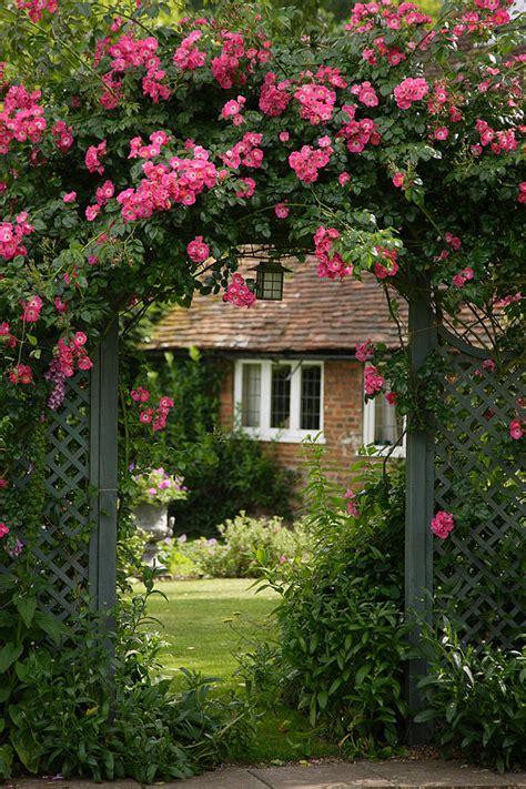Flower Trellis England Photograph By Michael Hudson