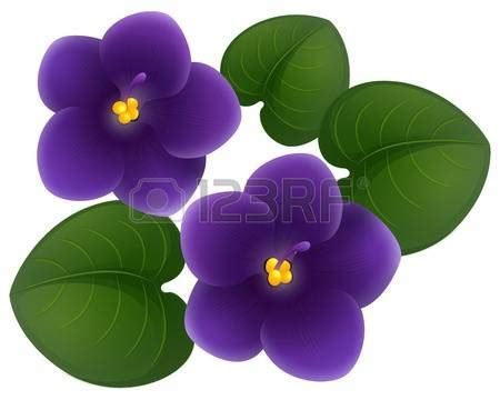 violet leaves clipart clipground