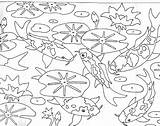 Pond Coloring Pages Koi Fish Drawing Garden Colouring Template Realistic Sketch Community Ponds Urban Underwater Getdrawings sketch template