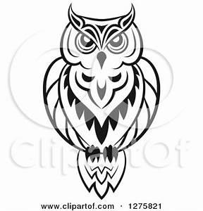Owl Illustration Black And White