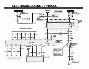 Ford Windstar Fuel Pump Wiring Diagram
