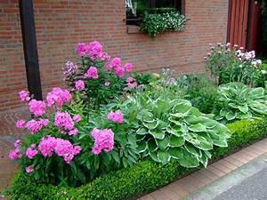 Welche Pflanzen Passen Gut Zu Hortensien : was passt zu hortensien hortensien das passt dazu mein sch ner garten welche pflanzen passen ~ Heinz-duthel.com Haus und Dekorationen