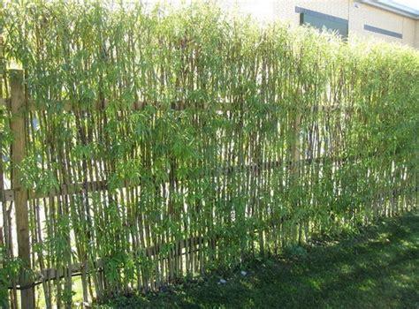Bamboo Garden Fence Design bamboo garden fencing ideas home design interior home decor