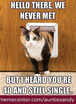 Cat Meme Ladies - cat lady funny similar galleries funny fat cat memes funny cat memes funny things