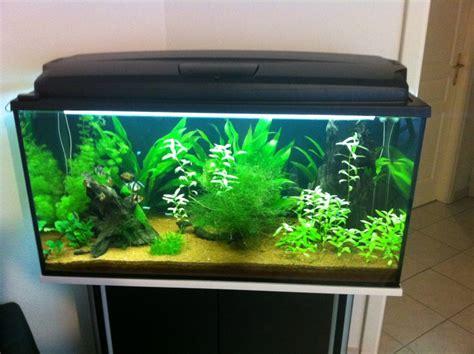 pompe pour aquarium 200l vend aquarium 200l 68