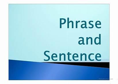 Sentence Phrase Worksheet Fun Worksheets Screen Upvote