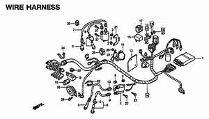 2002 Honda Shadow 750 Wiring Diagram