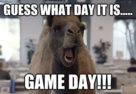Game Day Meme - guess what day it is game day geico camel hump