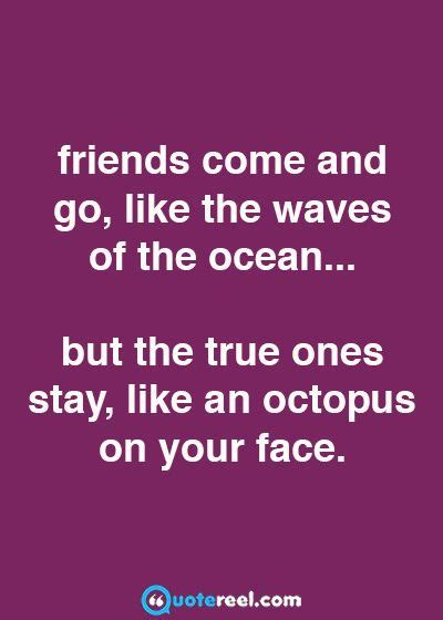 funny friends quotes  send  bff daily humor bff