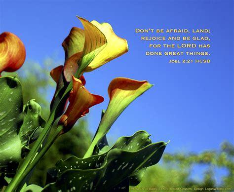 glad dont  afraid land rejoice   glad