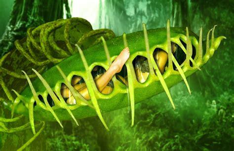 carnivorous plant peril  cardinalchunder  deviantart