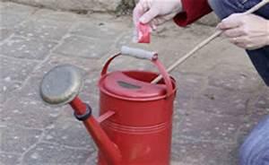 Ameisennest Im Haus : mit naturstoffen gegen ameisenplagen wohnen news f r heimwerker ~ Markanthonyermac.com Haus und Dekorationen