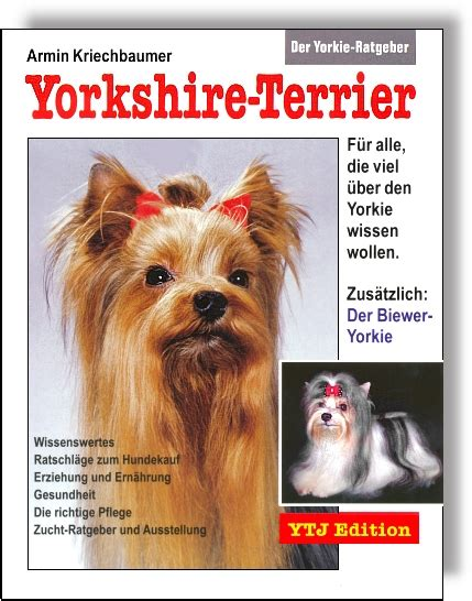 der yorkie ratgeber yorkshire terrier yorkies