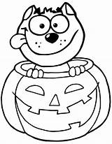 Pumpkin Coloring Pages Cat Printable sketch template