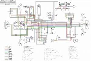 350 Warrior Wiring Diagram
