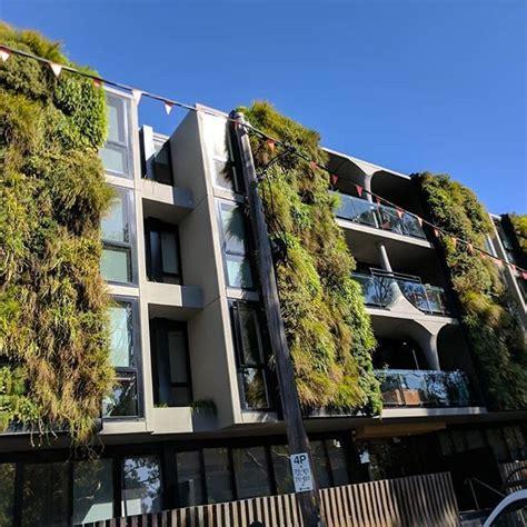 Vertical Garden Melbourne by Australian Vertical Gardens In West Melbourne Just