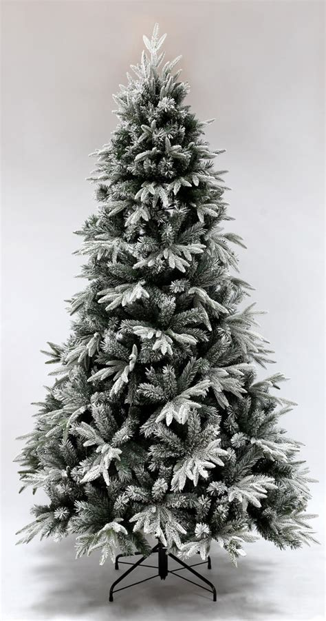 the snowy alpine tree 4ft to 8ft