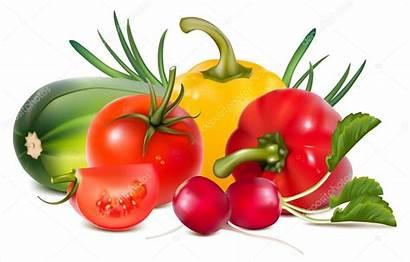 Vegetables Fresh Vector Illustration Colorful Clipart Fruit
