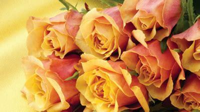 Efendimiz in (sav) Hayatındaki Dört Fatıma , Muhammed Emin ...