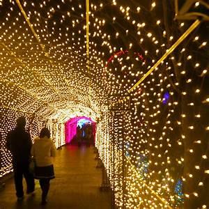 China, Fairy, Party, Lights, Led, Net, Light, Christmas, Decoration, Lighting, Tunnel, Decoration